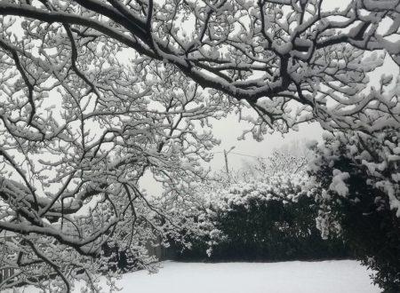 Report fotografico nevicata nel Varesotto e Comasco del 31-01 / 01-02-19.   II parte