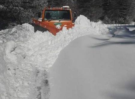 Nevicate abbondanti sulla Sila Greca