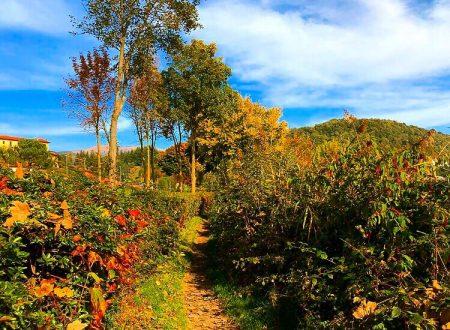 """Ottobre si congederà con la classica """"Ottobrata"""" sulle regioni centro settentrionali"""