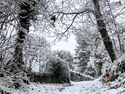 Nord Italia, fase acuta di maltempo a partire da Domenica, con possibilità di neve a quote molto basse.