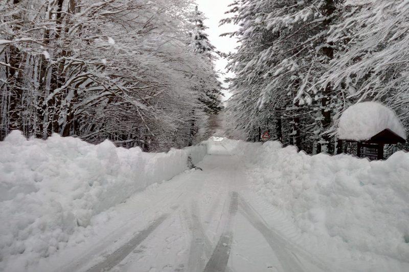 Centro-Sud, in arrivo il miglior colpo invernale: buona dose di neve e gelo anche a quote basse
